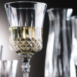 The Utopia Gatsby polycarbonate wine glass from Parsley in Time.